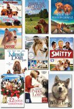 Dog Lover's Bundle - Set of 10