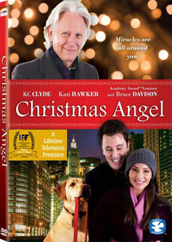 ashley takes a job as an assistant to nick a sort of secret santa who helps others anonymously and agrees to keep it a secret but then she meets will - The Christmas Secret Dvd