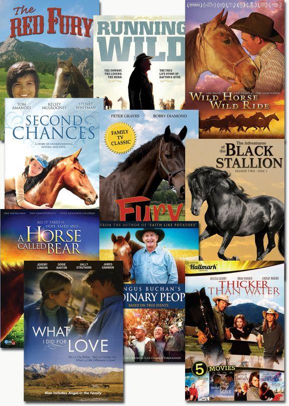Horse Lover's Bundle - Set of 10