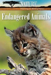 Nature: Endangered Animals