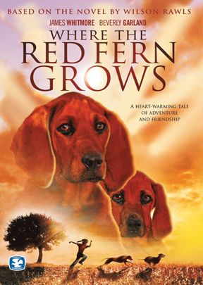 pdf where the red fern grows